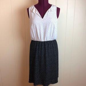 3/$27 Loft Black White V Neck Career Dress